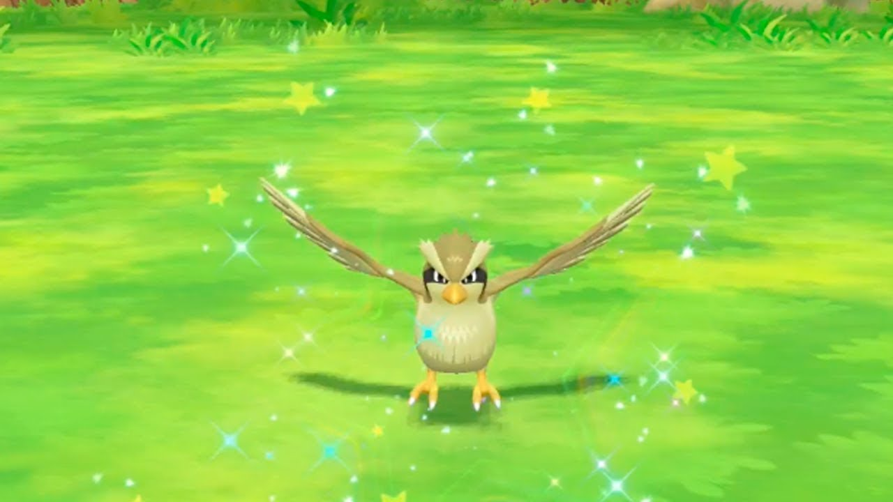 Shiny Pidgey in Pokemon Let's GO Pikachu - YouTube