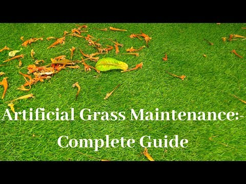 Artificial Grass Maintenance: Complete Guide with Pros & Cons||Backyard Gardening