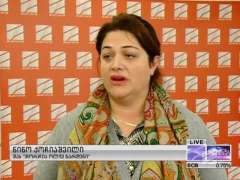 QNet აფიორა საქართველოში