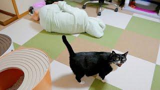 帰ってきたら妻が倒れていると猫がカッスカスの声で教えてくれましたw