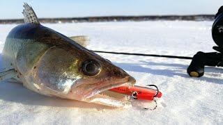 А СУДАК И НЕ ЗНАЛ ЧТО УЖЕ МАРТ Зимняя рыбалка 2020 судак на раттлин зимой