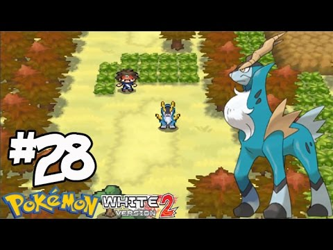how to catch cobalion in pokemon white