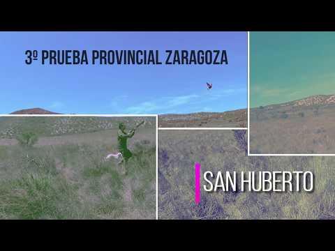 "campeonato-de-caza-""san-huberto-2019""-3º-prueba-provincial-de-zaragoza-"