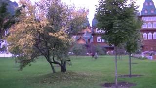 Дворец царя Алексея Михайловича 0010