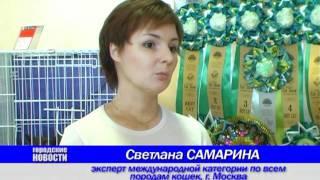 """Выставка Кошек """"Кошачье Царство"""" .mpg"""