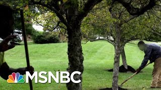 Why Some Businesses Can't Hire American Workers | Velshi & Ruhle | MSNBC