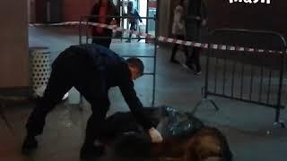 На станции Цветной бульвар полицейский застрелил собаку. На него ее натравил бездомный