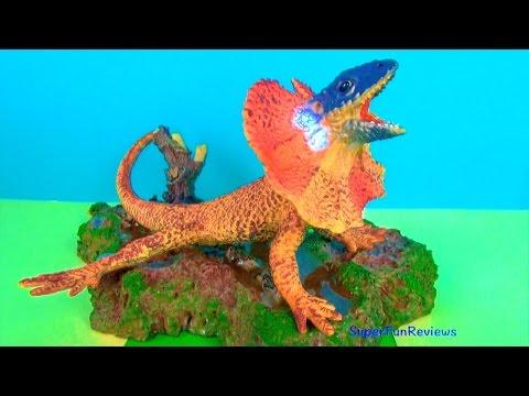 Lizards Komodo Dragon Chameleon Thorny Dragon Frill-Necked Bearded Dragon Collared Lizard Tuatara