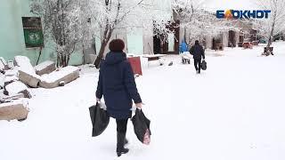 Деньги, собранные на жизнь бродяги из Волжского, пустили на корм собакам