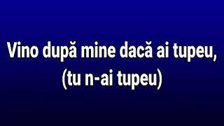 "Abi "" rege pa Romania"" versuri"