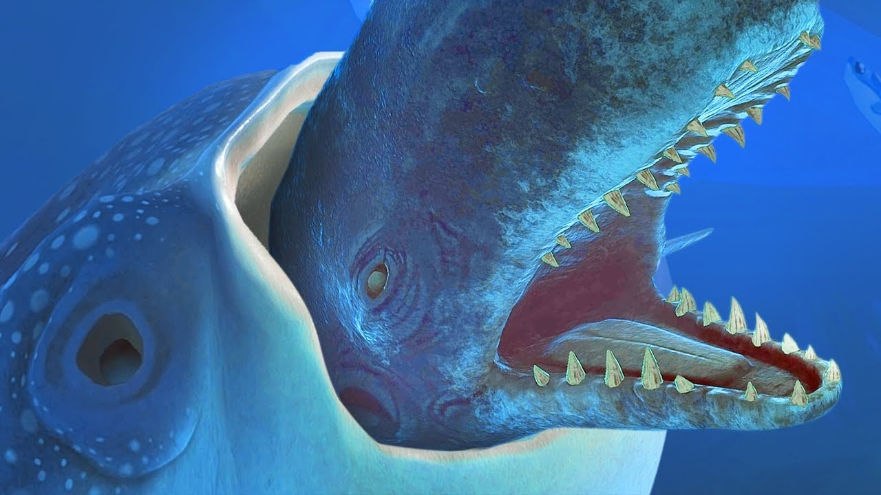 Giant Whale Shark Eats A Giant Whale Feed And Grow Fish Part