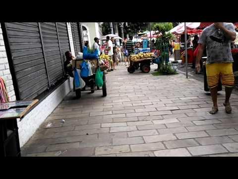 Manaus-Downton festival ( 2017 februar)