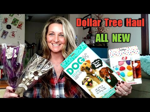 Dollar Tree Haul | ALL NEW | Trying Out Products 😃 Ideas | Dec 13