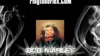 Bob Marley - Stir It Up (styte Dubstep Remix) HQ + download link