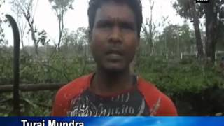 Tea farms, villages ruined as severe storm hits West Bengal