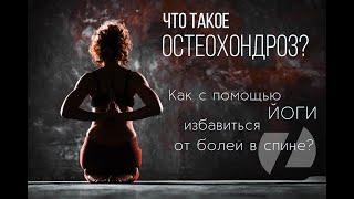 Что такое остеохондроз Как с помощью йоги избавиться от болей в спине