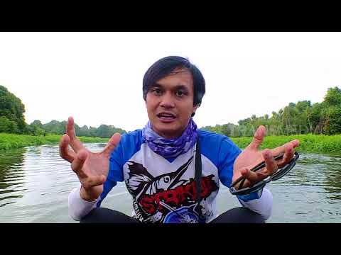 PREDATOR RIAU YANG SULIT DITEBAK - MANCING MANIA (24/9/17) 3-1