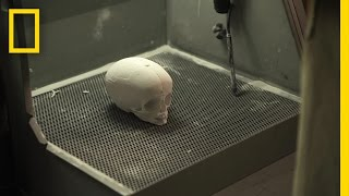 rebuilding a 6000 year old skull lost faces of the bible