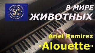 """В мире животных """"Alouette"""" ~ """"Жаворонок"""" Ariel Ramirez"""