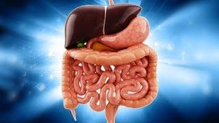 9 Einfache Möglichkeiten deinen Körper zu entgiften!