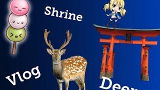 Japan Vlog 6   Miyajima Island   TALKING DEER