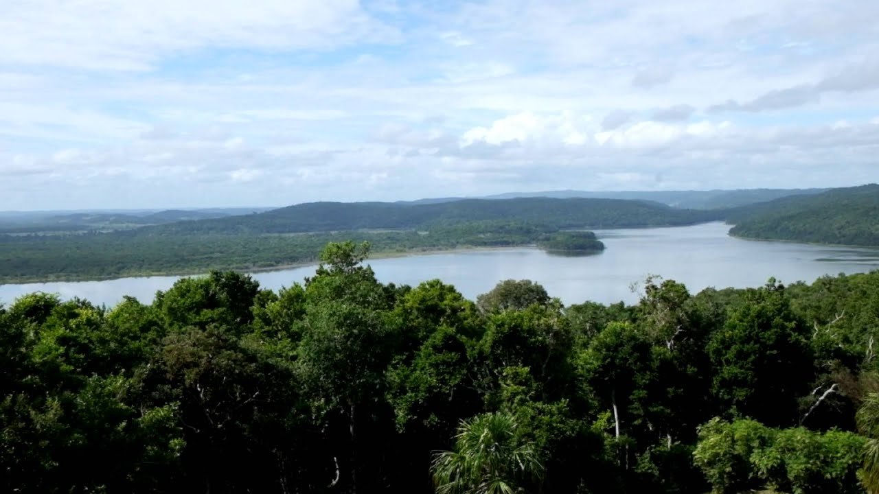 Tikal desde el Templo IV