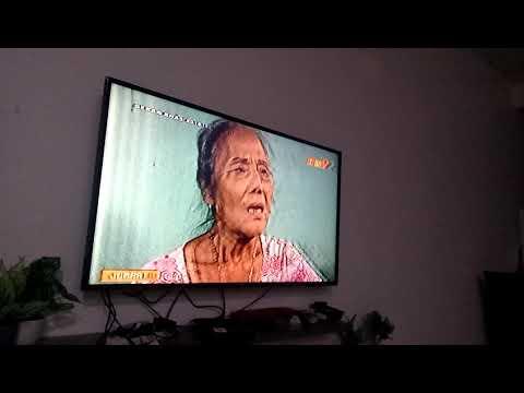 Digital TV in Malaysia is dead! Cepat baiki oi! Puas melayan analog TV!