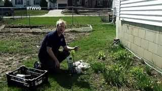 Creating A Berry Bush Bed & Raised Row Planting - The Wisconsin Vegetable Gardener Extra 45