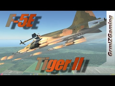 DCS - F-5E Tiger II // Overview and Online Sortie