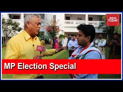 Who Will Be The Sher-E-Bhopal ? |  Elections On My Plate With Rajdeep Sardesai