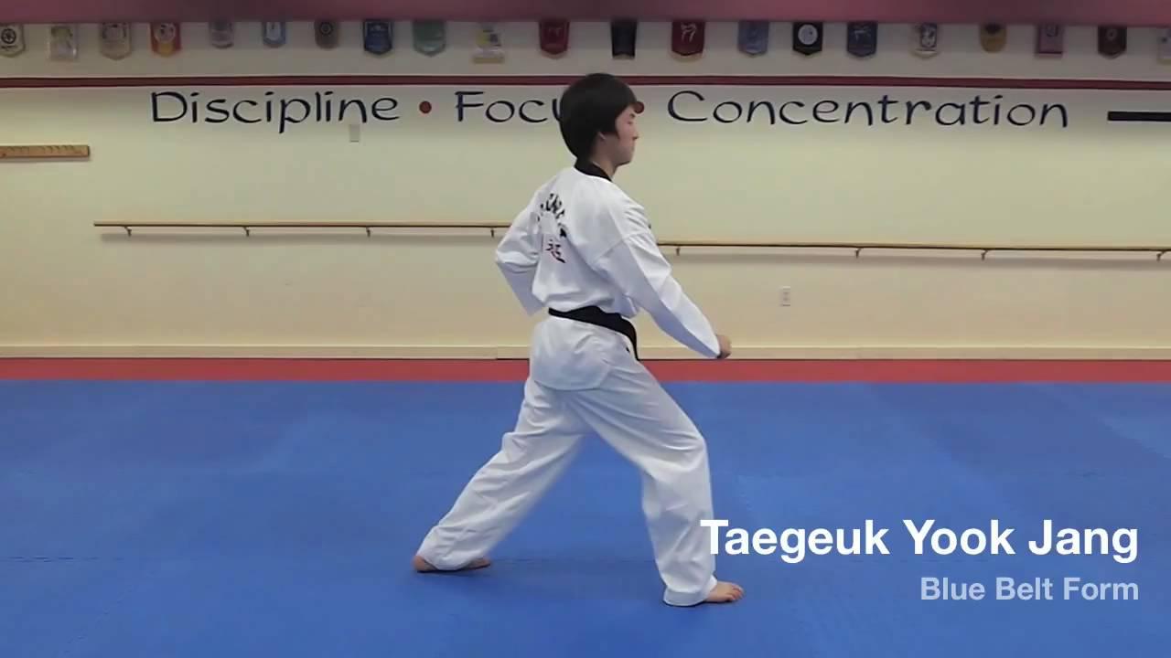 Taekwondo Belt Generic Budog/ürtel//Taekwondog/ürtel