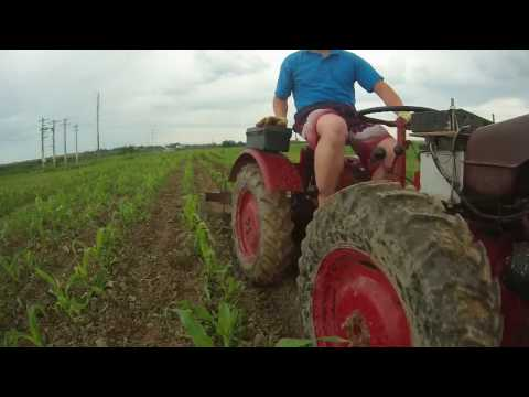 Prasit bilonat musuroit Porumb cu motocultor/tractor/tractoras Pasquali