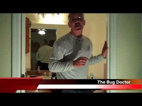 Big Trouble With Big Roaches In Your Bathroom