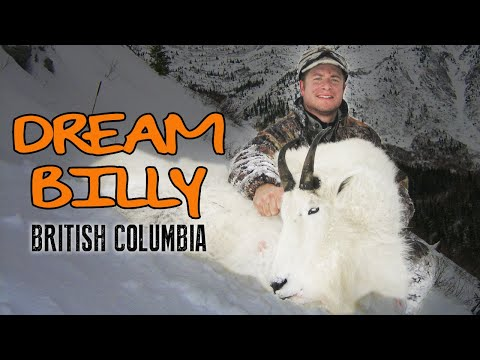 Mountain Goat Hunting in British Columbia, Trophy Goat Hunt