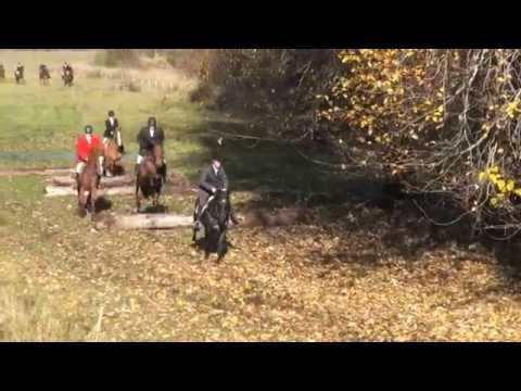 Leo and Blazes 1st FOX HUNT at Riverlands Pemberton BC