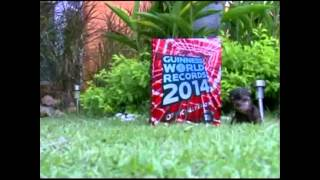 BT Vancouver: Guinness Book Of World Records 2014