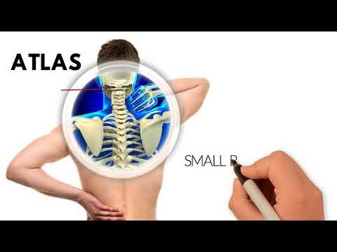 DR. EDWARD CORSELLO D.C. IS AN UPPER CERVICAL CHIROPRACTOR IN STRATFORD, CT