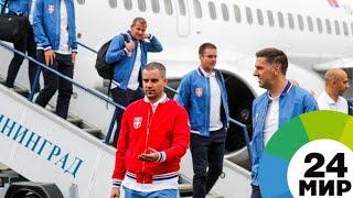 Сербских футболистов встретили в Калининграде - МИР 24