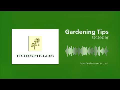Gardening Jobs In October