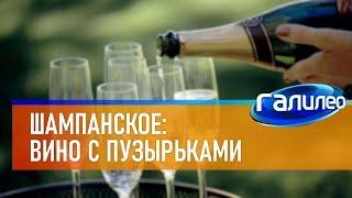 Галилео 🥂 Шампанское: вино с пузырьками