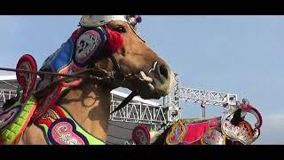 Download Video Kuda Silat Bandung, Opening Anniversary HIKA Bio Farma MP3 3GP MP4