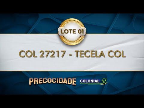 LOTE 01   COL 27217