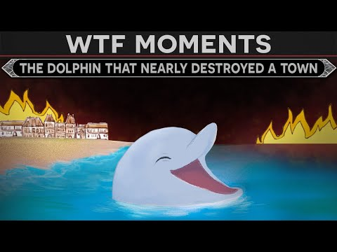 WTF Moments in History – The Dolphin That Nearly Destroyed a Roman Town – Invicta