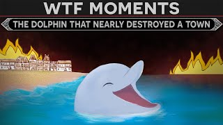 WTF Moments in History - The Dolphin That Nearly Destroyed a Roman Town
