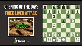 Chess Openings: How to Play the Fried Liver!