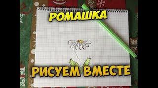 Как нарисовать ромашку.