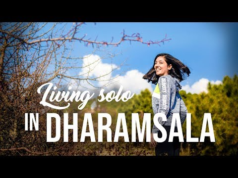 Solo Girl living in Dharamsala for a Month | Hike to Indrunag