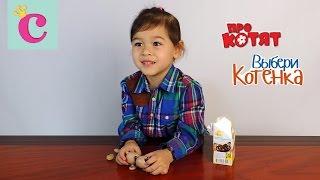Открываем коробочку с сюрпризом ПРО КОТЯТ about KITTENS Choose a Kitten ► София маленькая