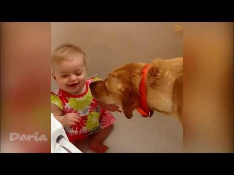 Смешные дети и животные! Весёлые моменты! ПРИКОЛЫ! # 1
