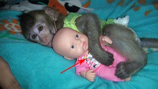 Baby Monkey Too Sleeping Hug Baby Doo Cute Monkey
